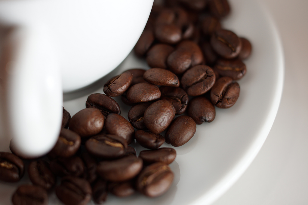 coffee beans nutrients